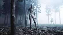 Scary Monster In Fog Night Forest. Fear And Horror. Mistic And Ufo Concept. 3d Rendering.