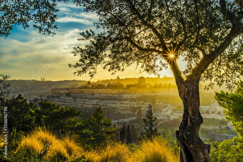 Fotografía Beautiful sunlit view of Jerusalem's Old City landmarks: Temple Mount with Dome