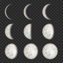 Vector Set Of Moon Phases On T...