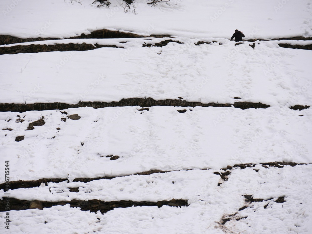 Layers of fluffy white snow covers the mountainside in Solang Valley, Himalayas.
