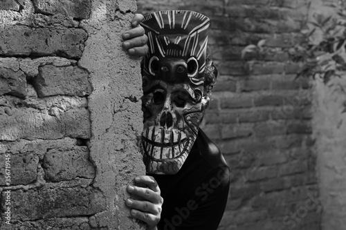 El dios murciélago acechando a su victima Wallpaper Mural