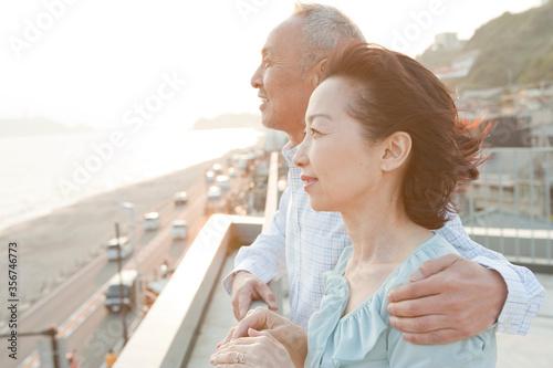 景色を眺めるシニアカップル