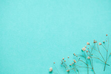 Paper Background With Flowers