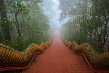 Great Naga Ladder. At Wat Phra...