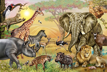 African Savannah Animals