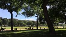 Washington DC National Mall People Lounging In Sunshine Summer