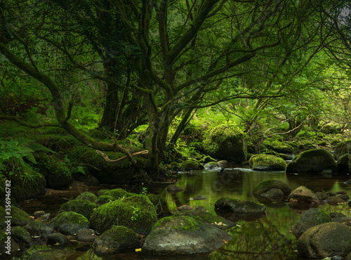 Wicklow River