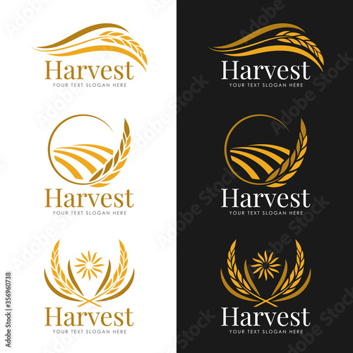 Fotografija Yellow gold Harvest paddy rice logo vector collection design