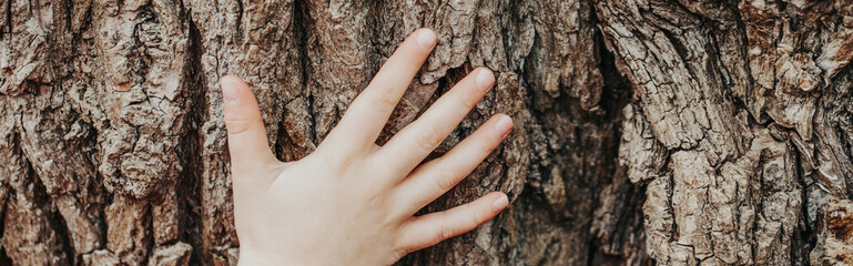 Closeup of child hand touching old tree. World Earth Day. Save the planet nature environment concept. Connection with mother nature. Banner header for a website.