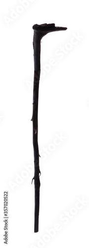 Fotografie, Obraz ancient shepherd wooden stick isolated on white background