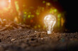 light bulb growth from the ground. - New idea and innovation concept.