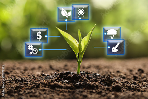 Photo Modern technology in agriculture. Green seedling and icons