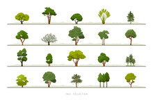 Collection Of Various Green Tree Vector Icon Set On White Background