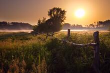 Morning Fog On The River. Sunrise Over The Lake.
