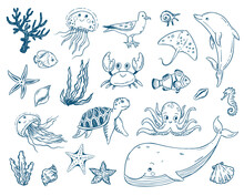 Vector Doodle Illustration Set Sea Creatures And Plants. Fish, Turtle, Whale, Dolphin, Jellyfish, Octopus, Sea Horse, Seaweed, Molluscs. Cartoon Coloring Book Undersea World.