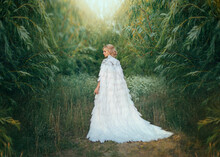 Fantasy Woman Queen In White Medieval Dress With Feathers. Creative Clothes Long Cape, Royal, Vintage Cloak With Train. Greek Goddess Swan Bird. Art Photography. Green Forest Tree. Image Trendy Bride