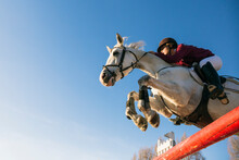 Low Angle View Of Girl Riding White Horse While Jumping Over Hurdle During Training Obstacle Course Against Clear Blue Sky