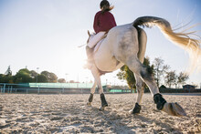 Rear View Of Jockey Girl Ridin...
