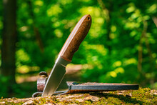 Hunting Knife On A Stump In A Forest Camp