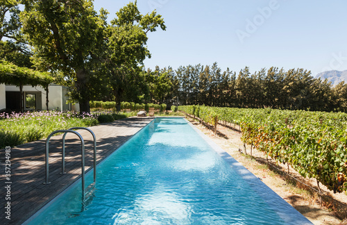 Luxury lap pool among garden and vineyards Canvas Print