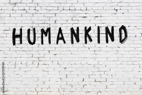 Vászonkép White wall with black paint inscription humankind on it