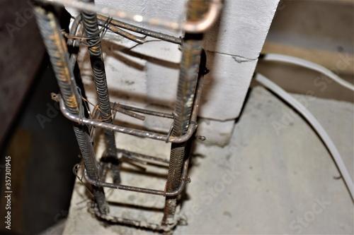 Obraz Belka z drutu  - fototapety do salonu