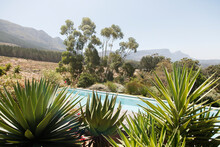 Swimming Pool With Aloe Plants In Foreground In Hilly Landscape