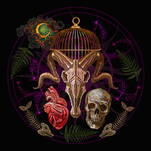 Bull Skull, Fish Bone, Moon, G...