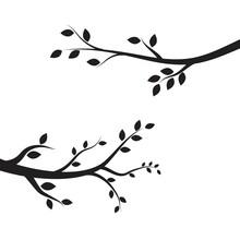 Tree Branch Vector Ilustration...