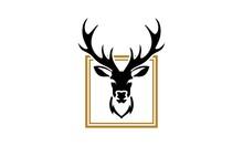 Deer, Animal, Antlers, Stag, Elk, Mammal, Wildlife, Reindeer, Head, Antler, Hunting, Trophy, Horns, Wild, Antelope, Skull, Horn, Silhouette, Whitetail, Animals