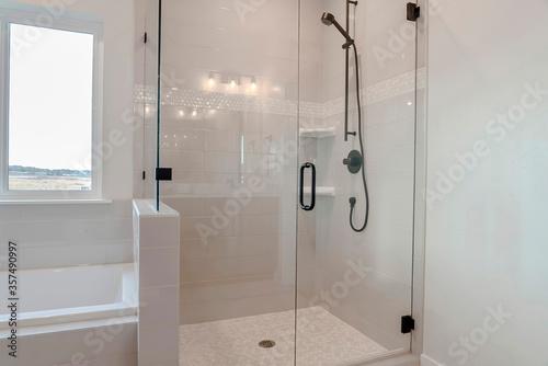 Bathroom shower stall with half glass enclosure adjacent to built in bathtub Canvas Print