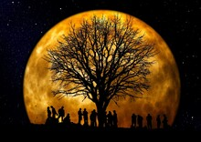 Creative Shot Of The Silhouette Of A Bare Tree Surrounded With People Against A Big Bright Moon