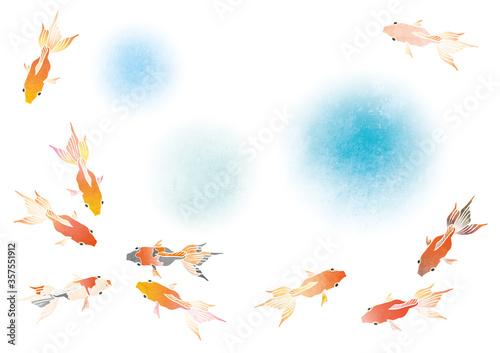 いろんな模様の泳ぐ金魚と水のベクターイラスト(水彩) Wallpaper Mural