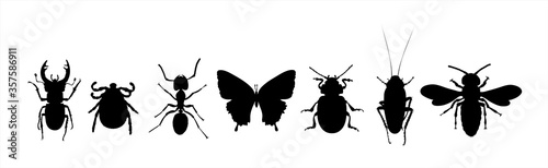Photo Collection of vector silhouette of animals on white background