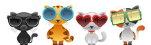 Cool Cats Set With Sunglasses....