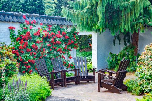 Fototapeta Peaceful corner in a flowered park