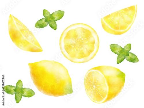 水彩タッチのレモンとミントのイラスト素材 Canvas Print