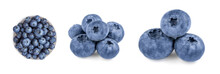 Fresh Blueberries Collection  ...