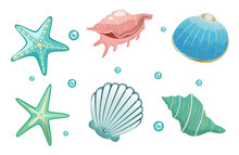 Sea Shells Collection Stock Vector Illustration. Isolated On White Background.