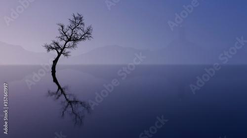 Fototapety, obrazy: Wanaka Tree In New Zealand
