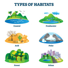 Types Of Habitats Vector Illus...