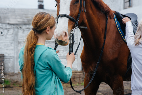 Photo A young and pretty girl stands and holds the reins of a thoroughbred Mare on a summer day at the ranch