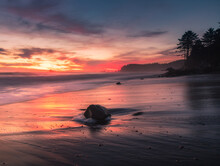 Pacific Northwest Sunset On The Beach With Waves Washing Over Driftwood.