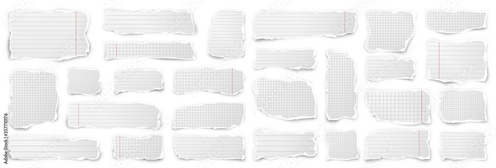 Fototapeta Ripped paper strips. Realistic crumpled paper scraps with torn edges. Lined shreds of notebook pages. Vector illustration.