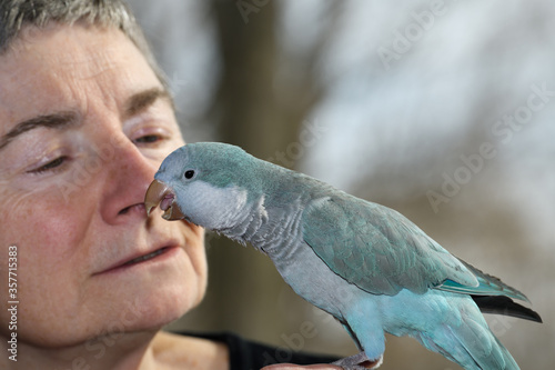 Fotografía Male blue Quaker Parrot talking near the face of a retired female owner
