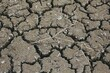 Landscape shot of dry brown soil with cracks