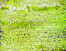 Cracked And Peeling Bright Lime Green Paint On Wood With Texture And Grunge Finish