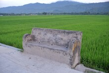The Permanent Cement Chair In ...