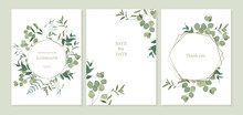 Set Of Floral Card With Eucaly...