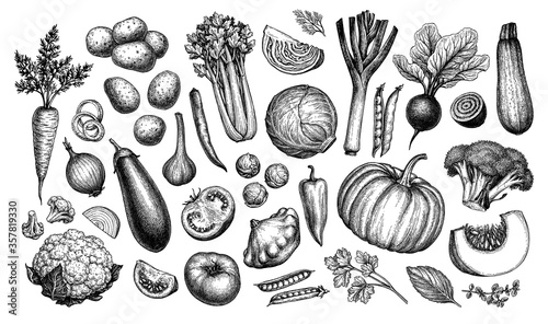 Leinwand Poster Big set of vegetables.